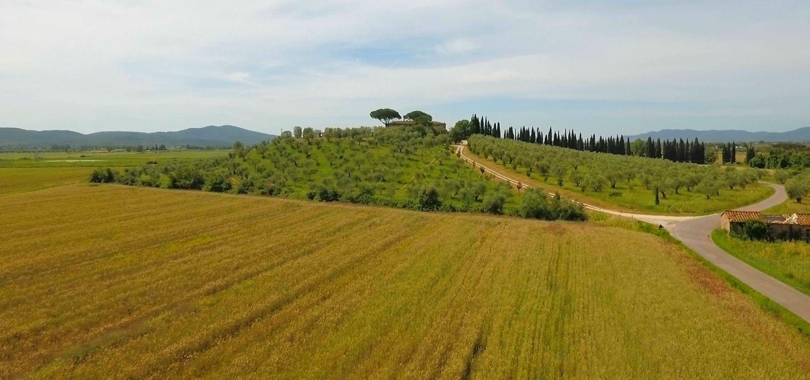 Collina di Montelattaia con storico casale toscano